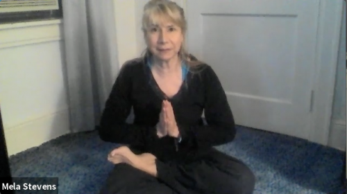 Keeping it Gentle on the Ground with Mela Stevens, video on demand