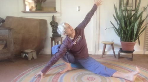 Art of Yoga: Move Like a Poem, with Sondra Loring, on demand